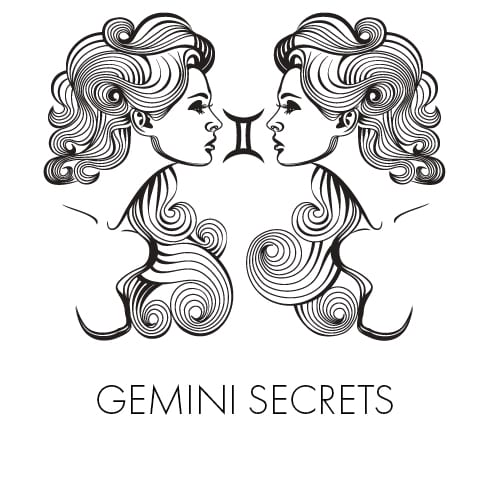 Gemini Man Secrets